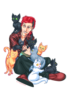 josh cats